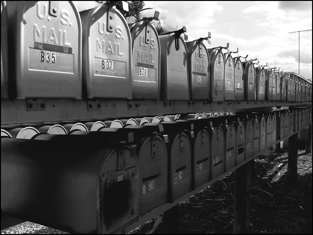 Boycott Texting : Mailbox love  ( Trailer Park America Series)  by Elizabeth Rodriguez
