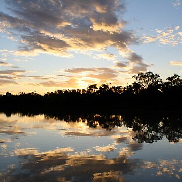 Reflections * Thomson River, Longreach by Dinkss