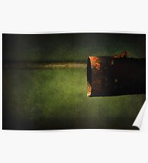 Autumn Green in Winter Poster