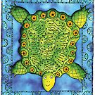 Turtle by Julie Nicholls