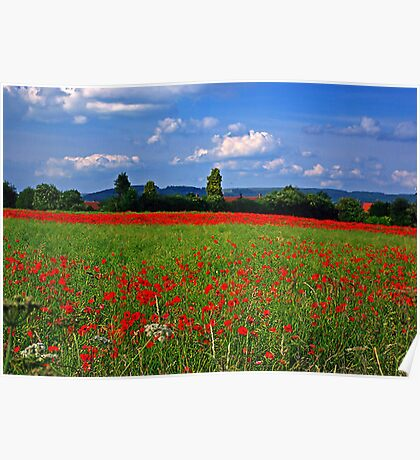Poppy Field  (Early May) Poster