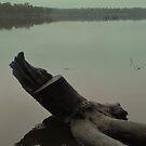 Lake Eppalock Morning by Lozzar Landscape