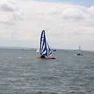 sailing bye by Marie Brown ©