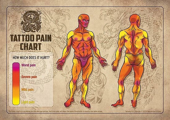 human body diagram tattoo tattoo pain chart  poster by dan lucifer redbubble  tattoo pain chart  poster by dan