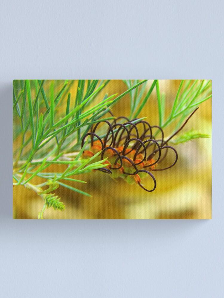 Alternate view of Grevillea calliantha  Canvas Print