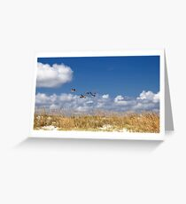 Pelicans soaring over Anastasia Island Greeting Card