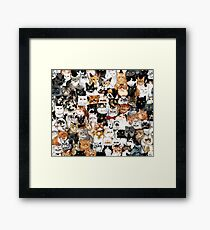 #Catminaproject by Jimiyo Framed Print