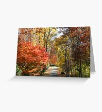 Brilliant Colors on a Fall Day Greeting Card