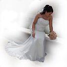 Bree's Wedding Day by Michael Rowley