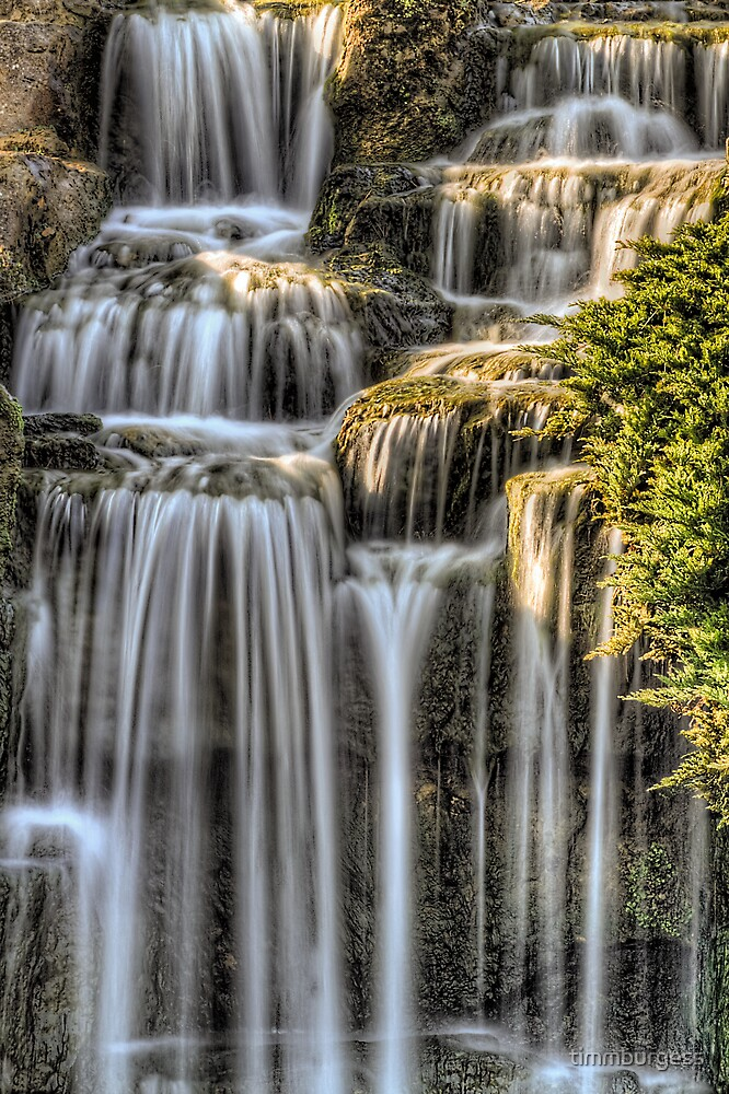 Alpine Area Waterfall Kew Gardens by timmburgess