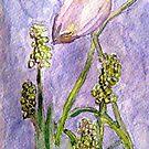 Essence of Spring by AngieDavies