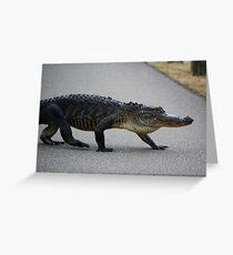 Gator Crossing Greeting Card