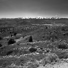 Reno by Brian Leadingham