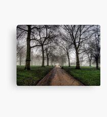 Fog in Green Park, London Canvas Print