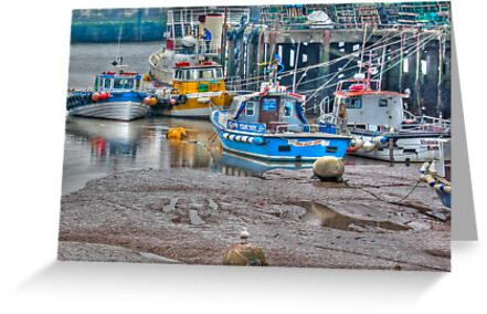 In The Harbour by Trevor Kersley
