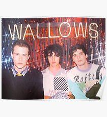 wallows -  Poster