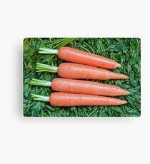 Fresh ripe raw carrot  Canvas Print