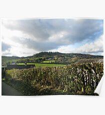Devonshire View - Uplyme,Devon,UK Poster