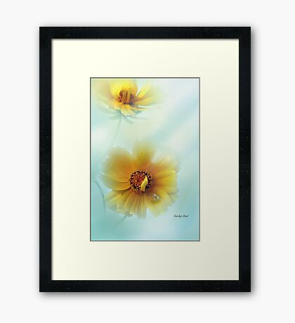 Not Quite Perfect Framed Print