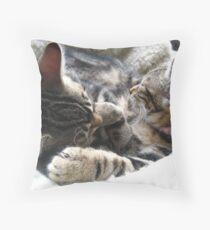 Two Sleepy Kittens Throw Pillow