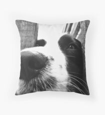 I Dream of Greater Things Throw Pillow