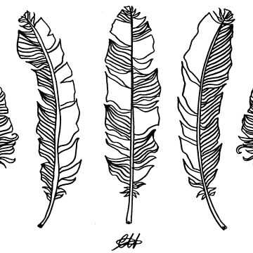 Feathers by georgieartist