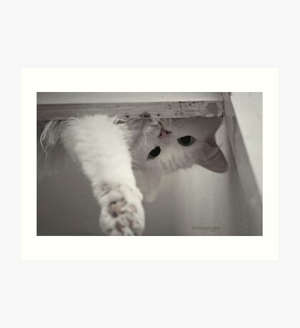 How Many Cats Does It Take to Screw in a Light Bulb?' Art Print