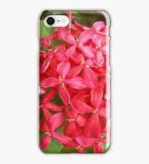 Spike Flower iPhone Case/Skin
