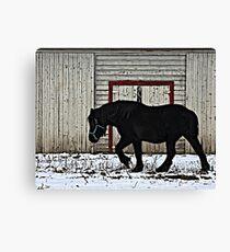 Winter Draft Canvas Print