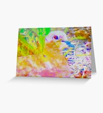 Early morning mourning dove Greeting Card