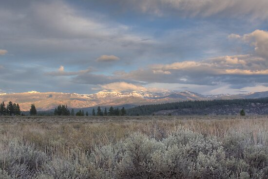 Early Winter by Dory Breaux