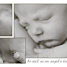 As Soft as an Angel's Breath... by Johanne Brunet