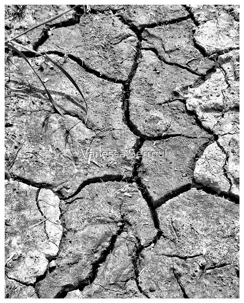 Crumble by Vanessa Serroul