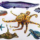 Sea Life by Marcus  Gannuscio