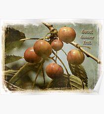 Sweet Summer Fruit Poster