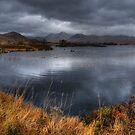 Rannoch Moor Vista, Scottish Highlands by Mark White