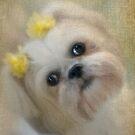 Pretty Girl by Carolyn Staut