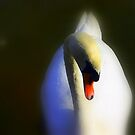 Bella Swan by yuca