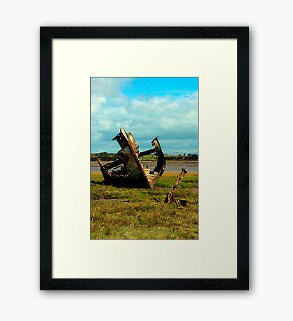 FD Clarin Framed Print