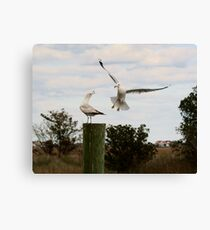This is My Post Canvas Print