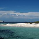Sea Lion Cay by Reef Ecoimages