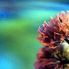 Clover Flower II by Mattie Bryant