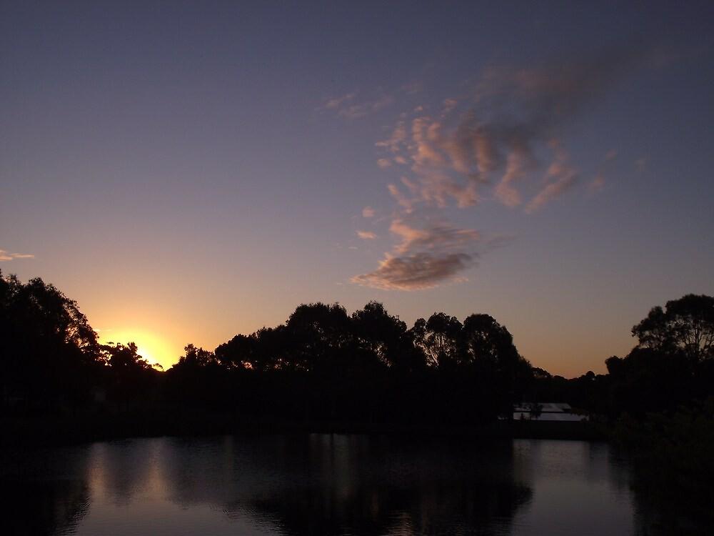 Tall Timbers sunset - Smithton (Tasmania) by gaylene
