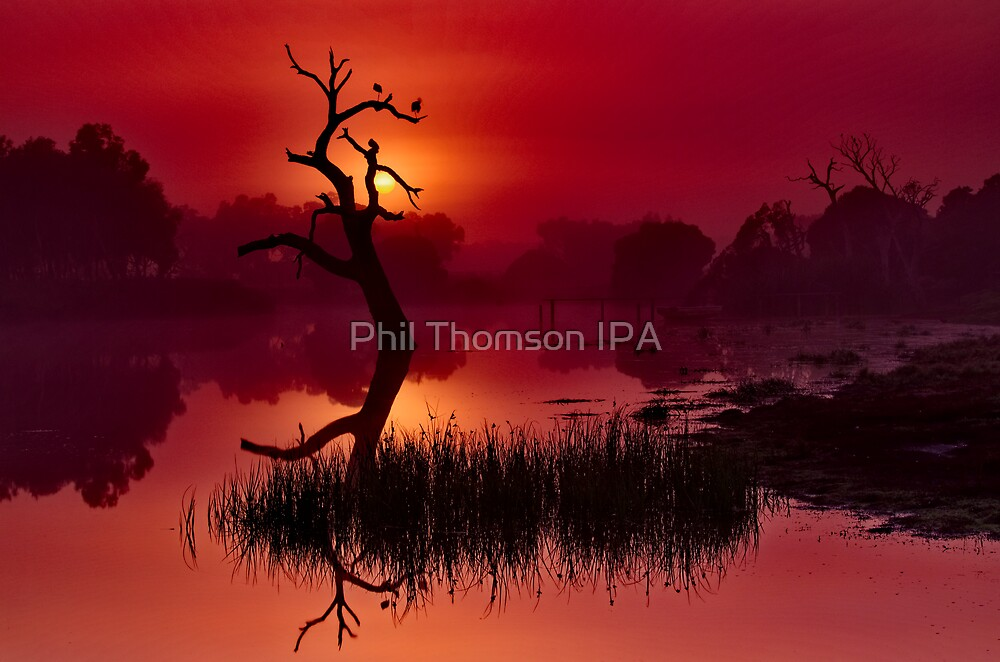 """Merlot Dawn"" by Phil Thomson IPA"