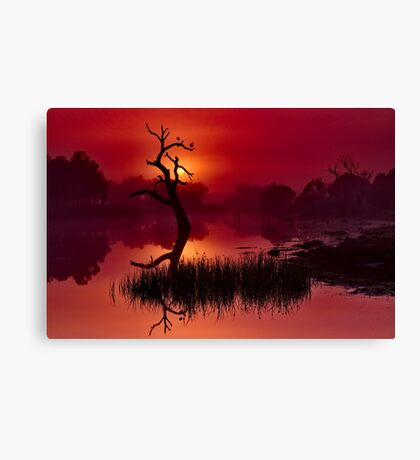 """Merlot Dawn"" Canvas Print"