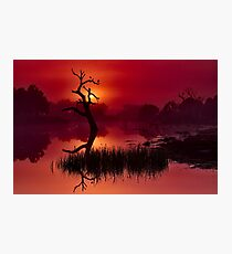 """Merlot Dawn"" Photographic Print"