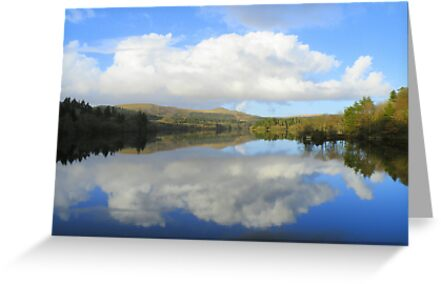 Dartmoor: Burrator Reflections by Robert Parsons