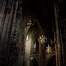 St. Stephen's Cathedral by Emre  Can