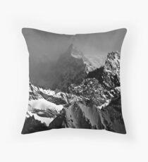 La Roche Faurio Throw Pillow