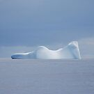 Reclining Woman Iceberg by Robert Case